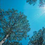 Miért szükséges a klímát rendszeresen karbantartani?