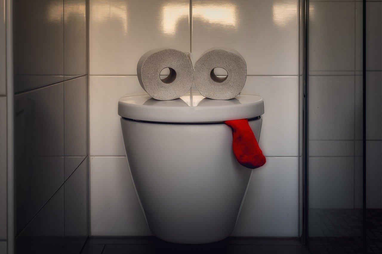 Hogyan lehetséges megelőzni a WC dugulását?